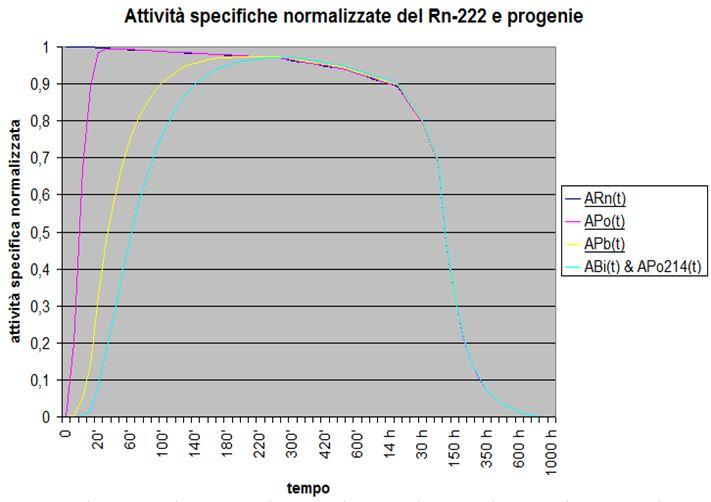 Concentrazione del radon nel tempo - Grafico delle attività normalizzate del Rn-222, e della sua progenie a breve vita, con produzione nulla, concentrazione iniziale e coefficiente totale di sottrazione diverse da zero.