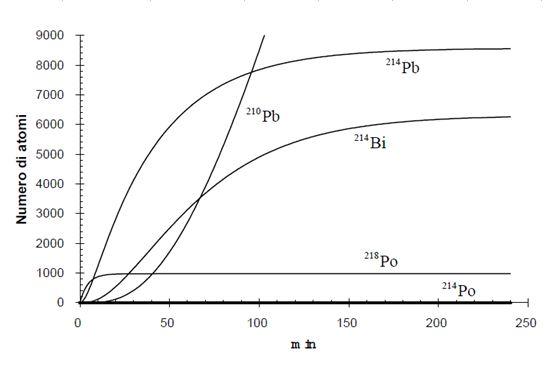 Concentrazione del radon nel tempo - Grafici della concentrazione del radionuclide radon con produzione e coefficiente totale di sottrazione costanti, insieme alla sua progenie.