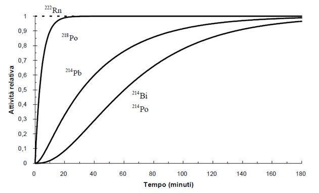 Concentrazione del radon nel tempo - Grafici della attività normalizzata del radionuclide radon con produzione e coefficiente totale di sottrazione costanti, insieme alla sua progenie.