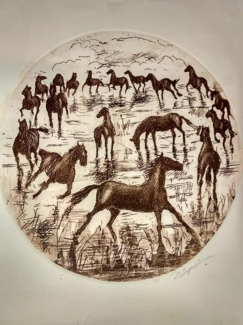 Disegno che rappresenta un branco di cavalli bradi in campagna, liberi e apparentemente in salute.
